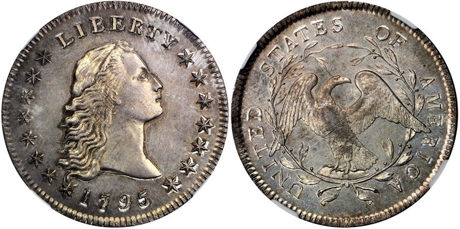Early Dollars 1795 Fl. Hair 2 Leaves