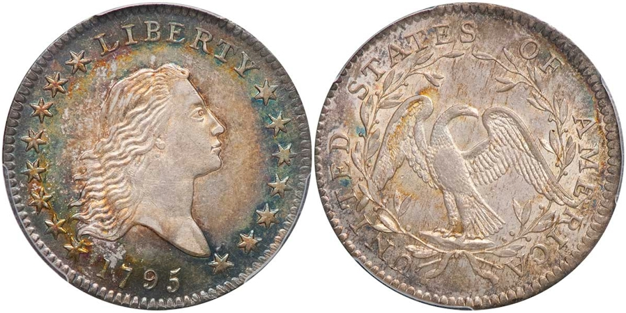 Early Half Dollars Flowing Hair Type